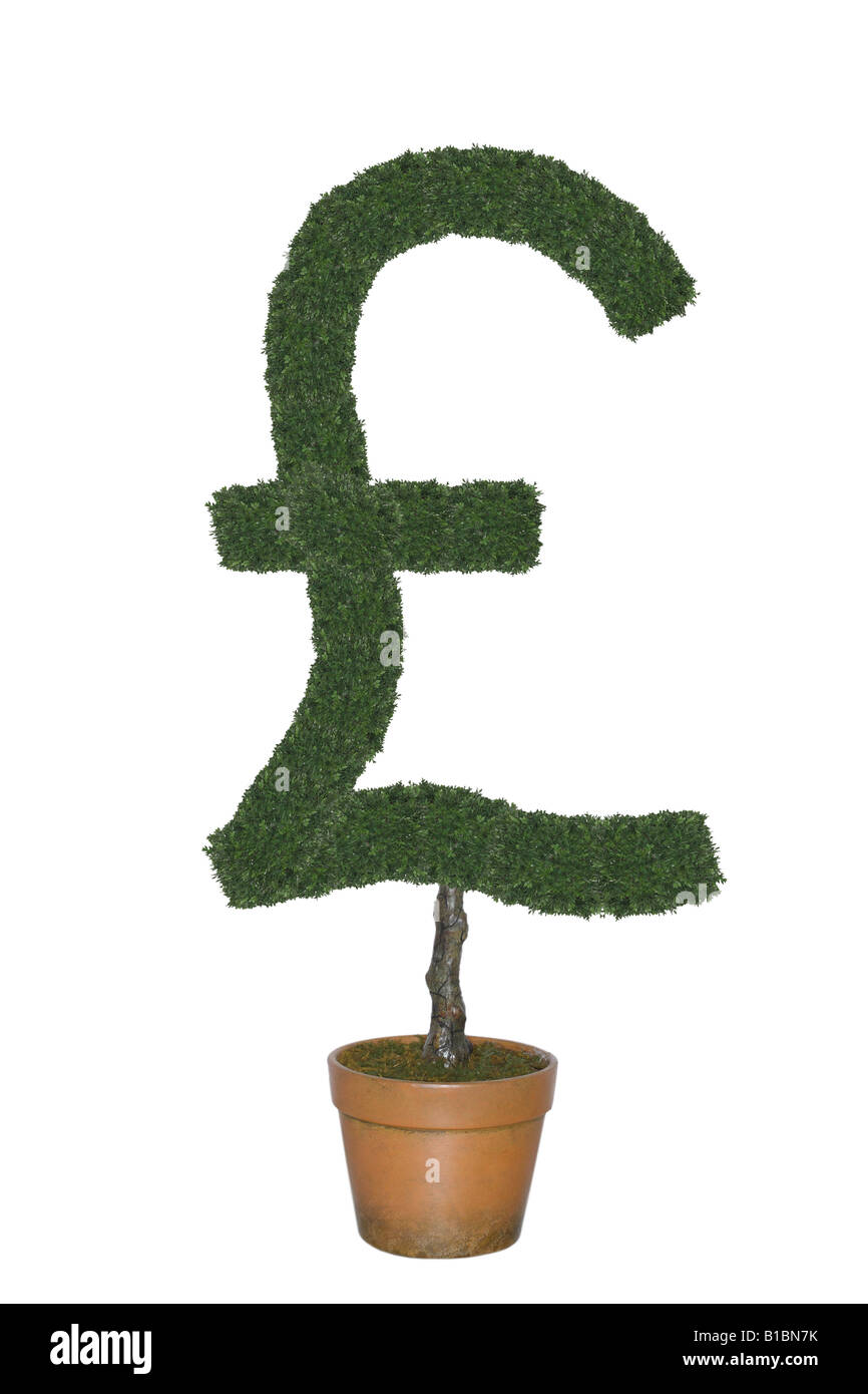 Topiary Tree In Shape Of British Pound Currency Symbol Cut Out On