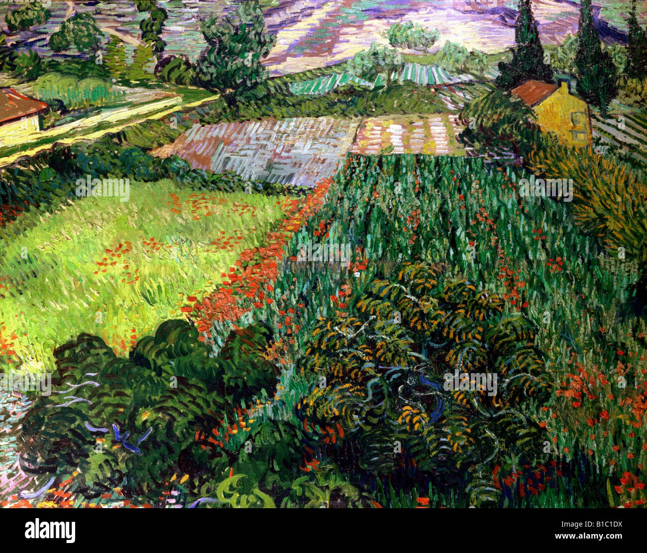 "fine arts, Gogh, Vincent van, (1853 - 1890), painting, ""poppy field,"", 1889 / 1890, oil on canvas, 71 cm x 91 cm, Stock Photo"