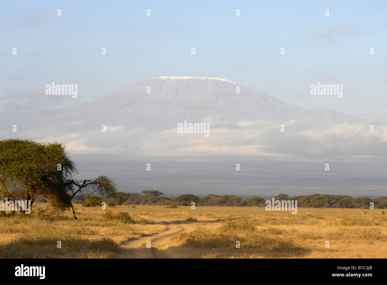 geography / travel, Kenya, Kimana Reservation, Mount Kilimanjaro, Additional-Rights-Clearance-Info-Not-Available - Stock Image