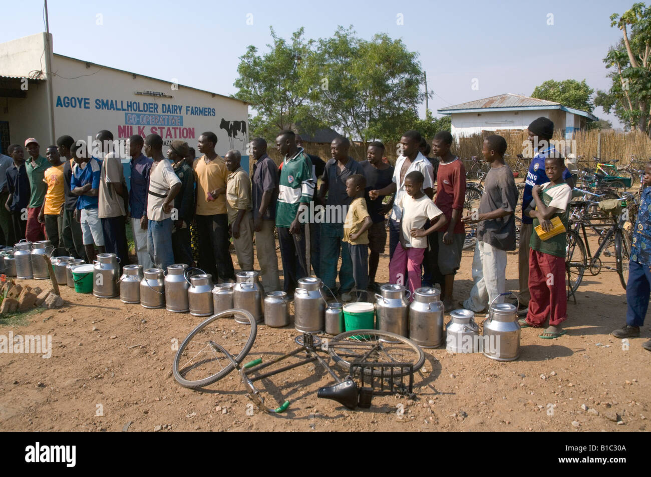 Dairy farmers queueing to deliver fresh milk to a smallholder dairy in Magoye, Zambia - Stock Image