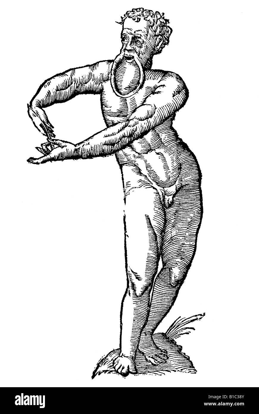 Nigrita labio inferiori pendulo, Aldrovandi, 1642, 17th century, renaissance, Europe - Stock Image