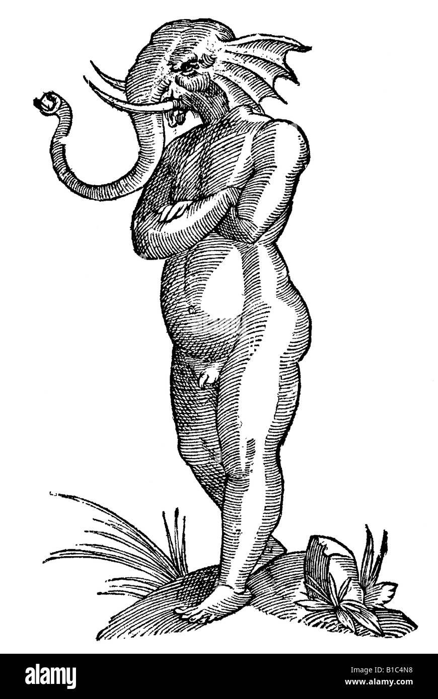 Puer capite elephantino, Aldrovandi, 1642, 17th century, renaissance, Europe - Stock Image