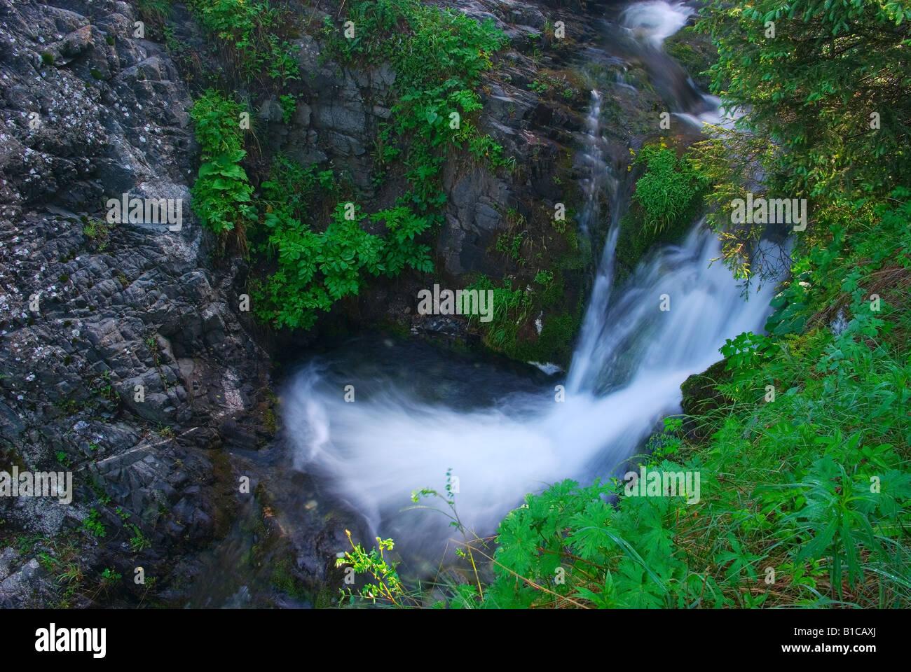 Cascades on creek - Stock Image