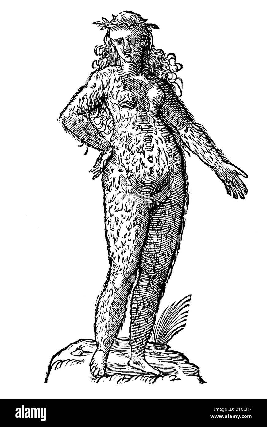 Foemina Cinnaminiae gentis, Aldrovandi 1642 17th century renaissance Europe - Stock Image
