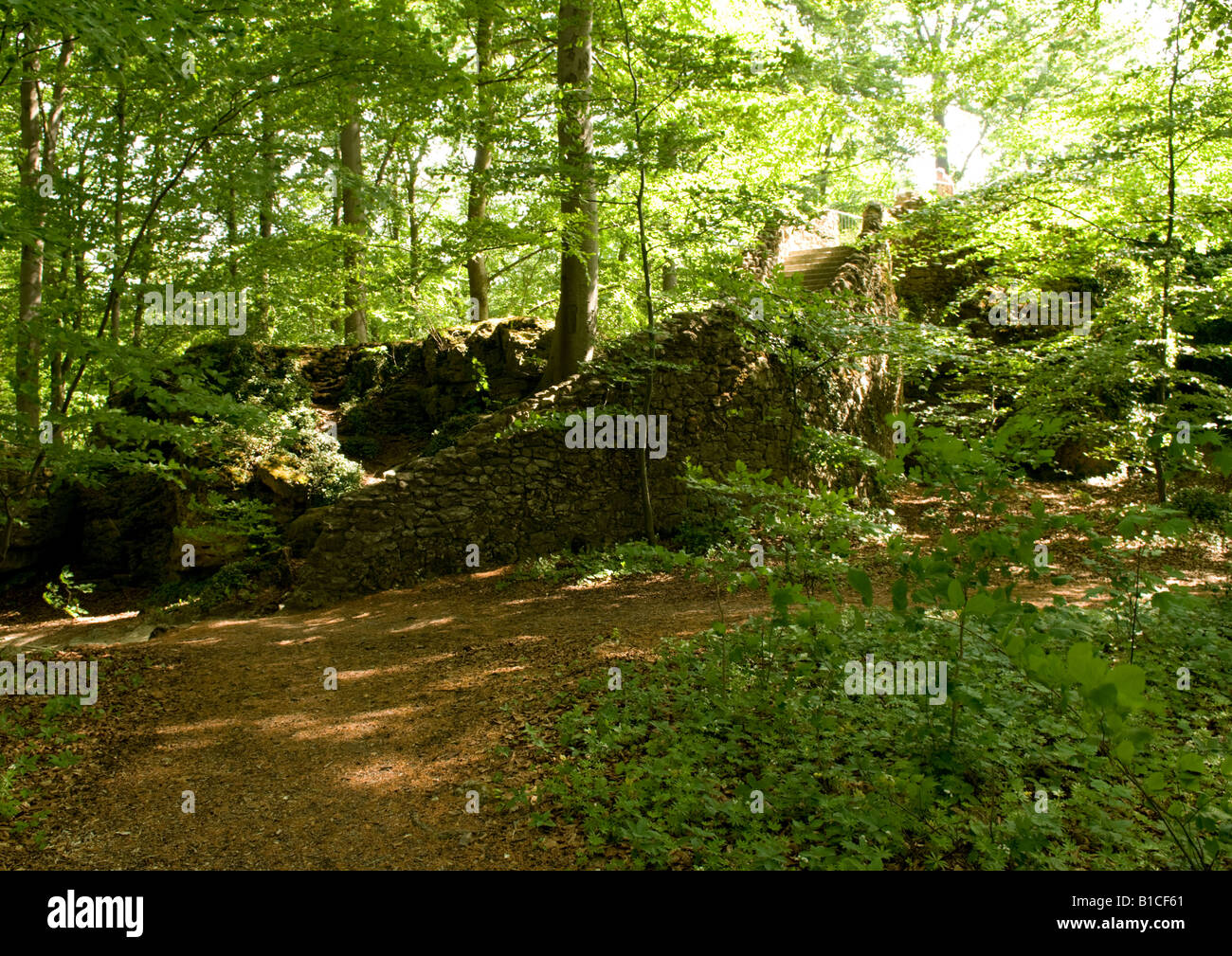 Crumbling stone wall in woodland - Stock Image