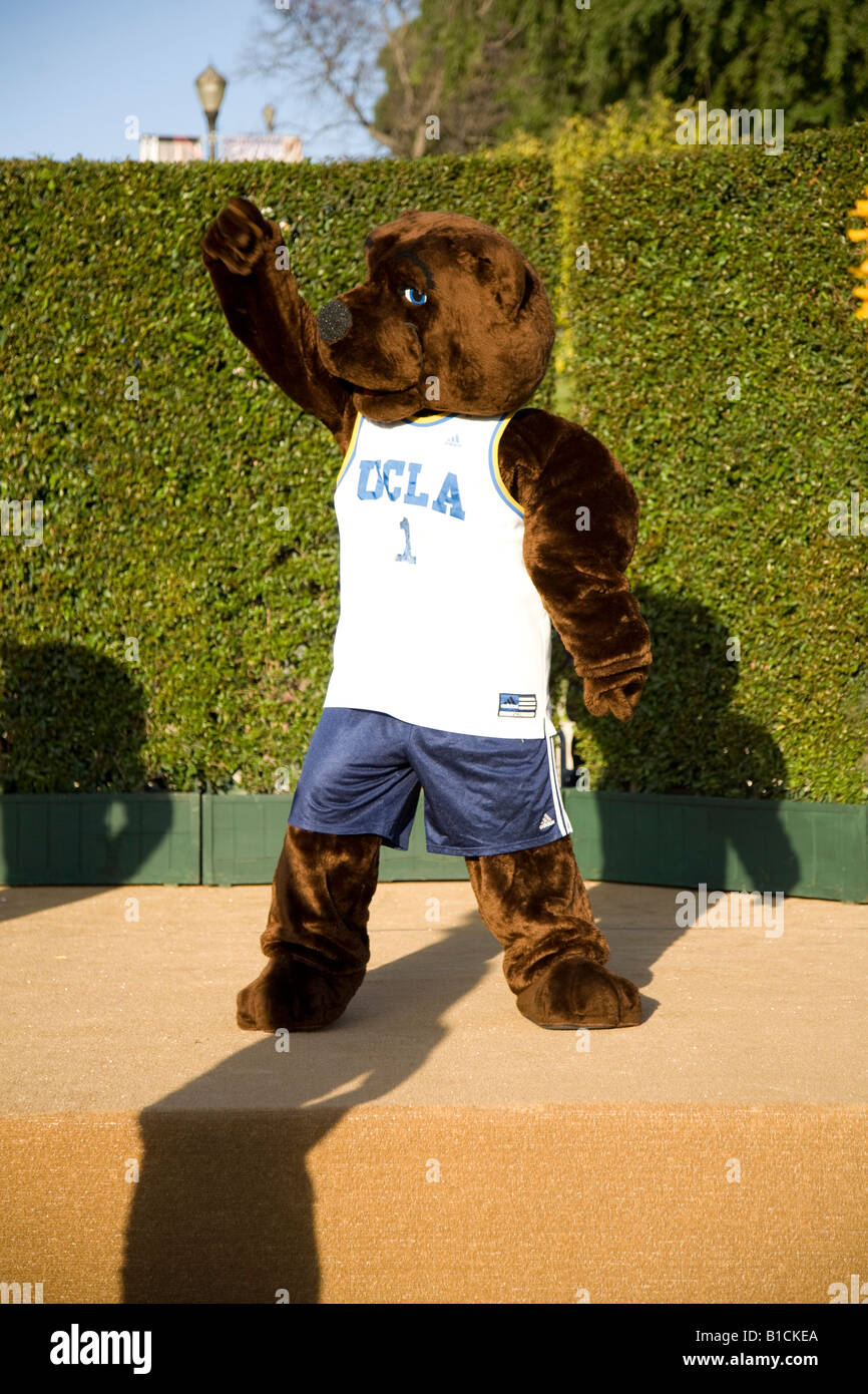 The UCLA Bruin riles up the alumni crowd at the first annual UCLA Day - Stock Image