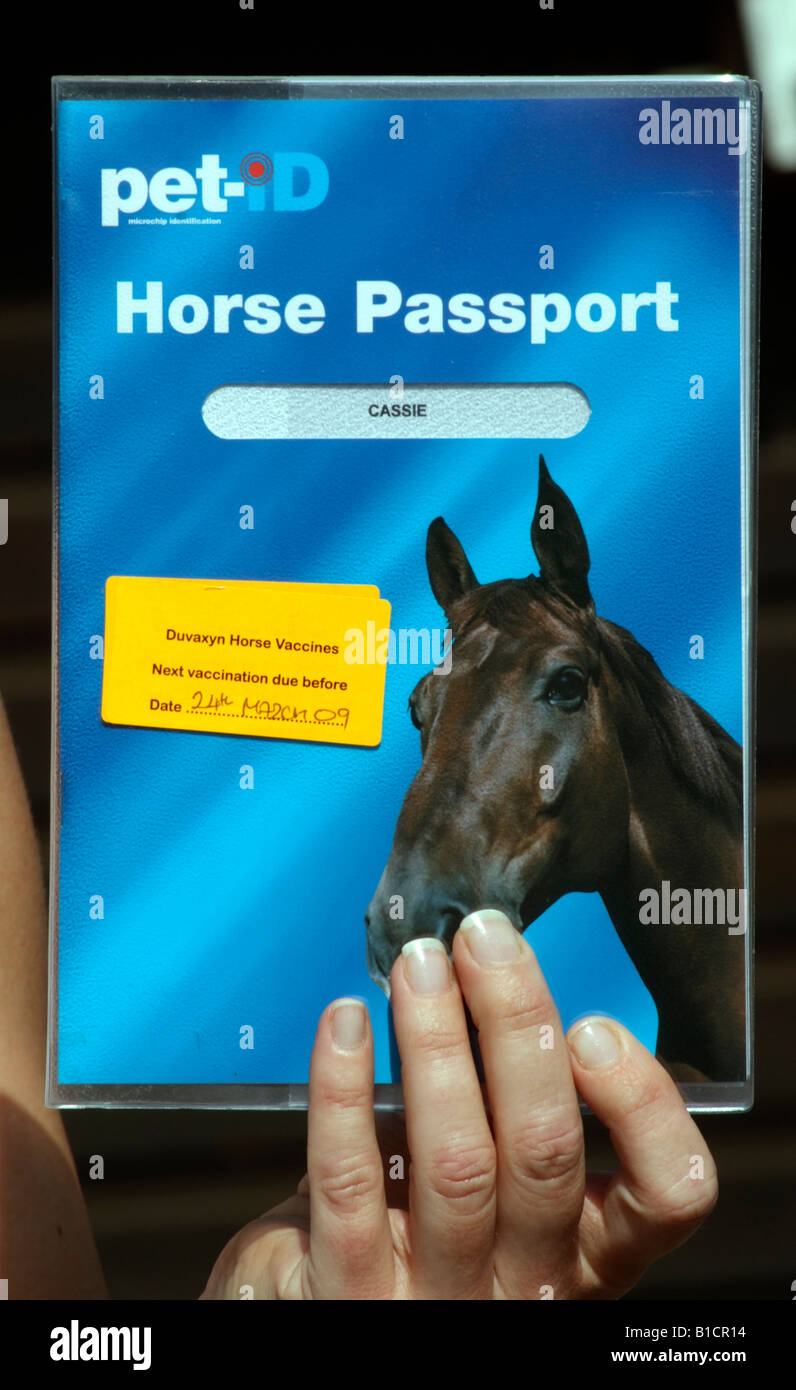 Pet ID Horse Passport folder document listing owner and animal details including vaccinations - Stock Image