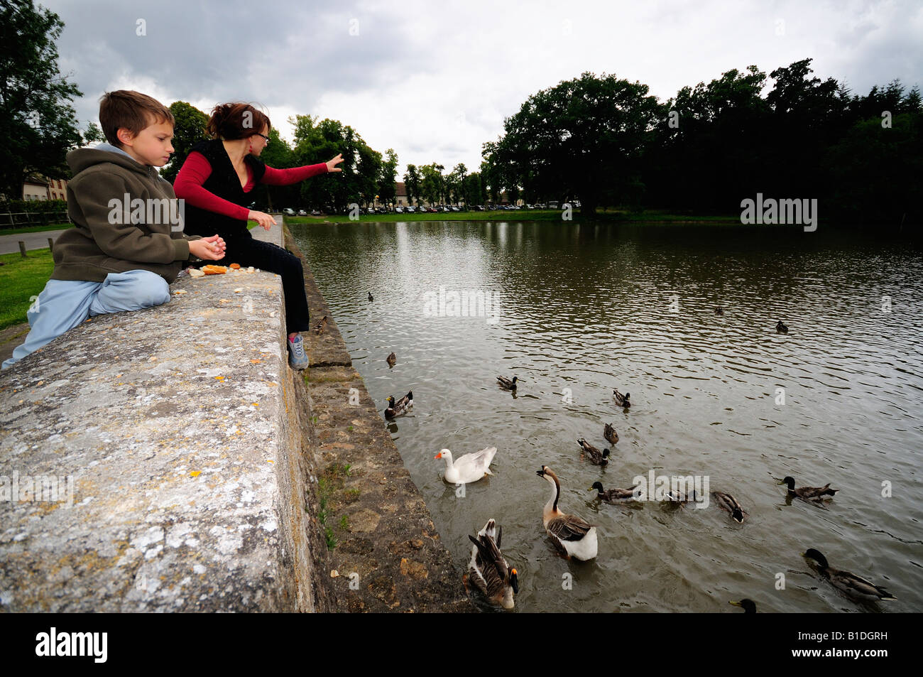 Rambouillet park mother and son feeding ducks birds - Stock Image