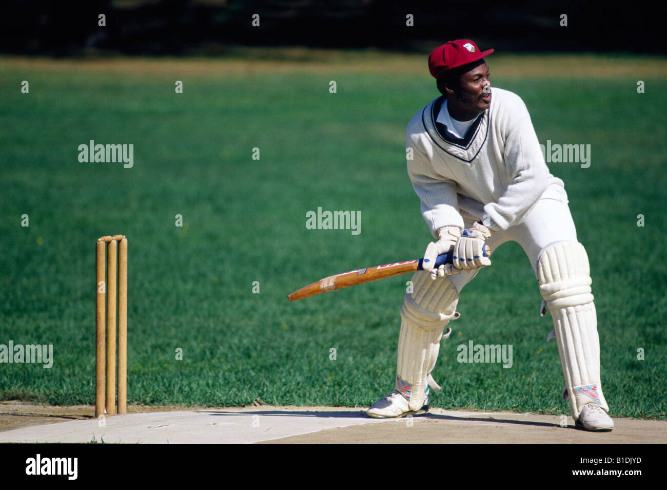 A cricket player bats during an informal match at Franklin Park in Boston - Stock Image