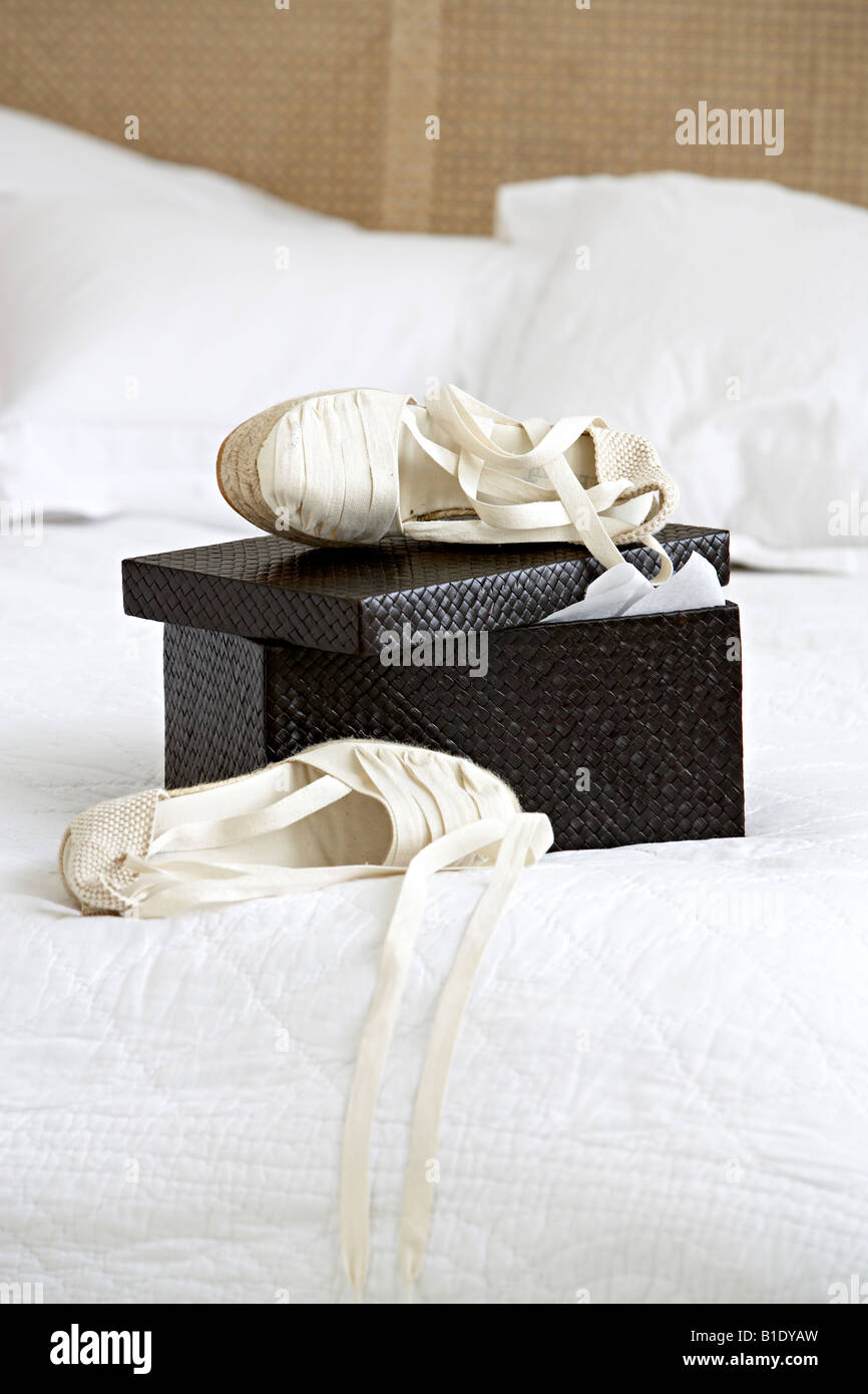 ballet shoes on box - Stock Image