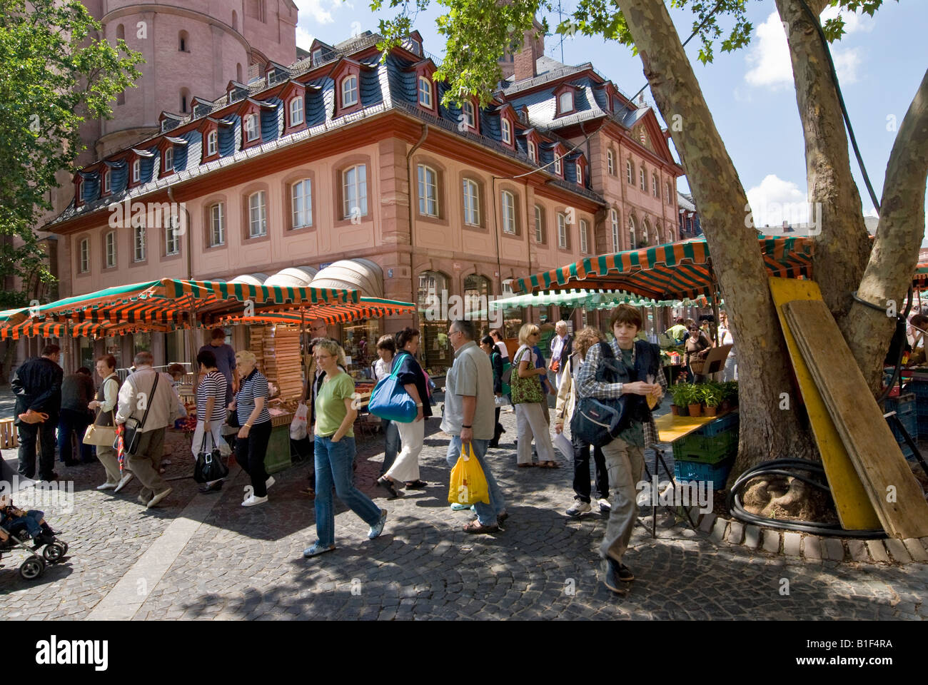 Market on Tuesday on the square in front of the cathedral in the center of the city of Mainz in Germany. - Stock Image