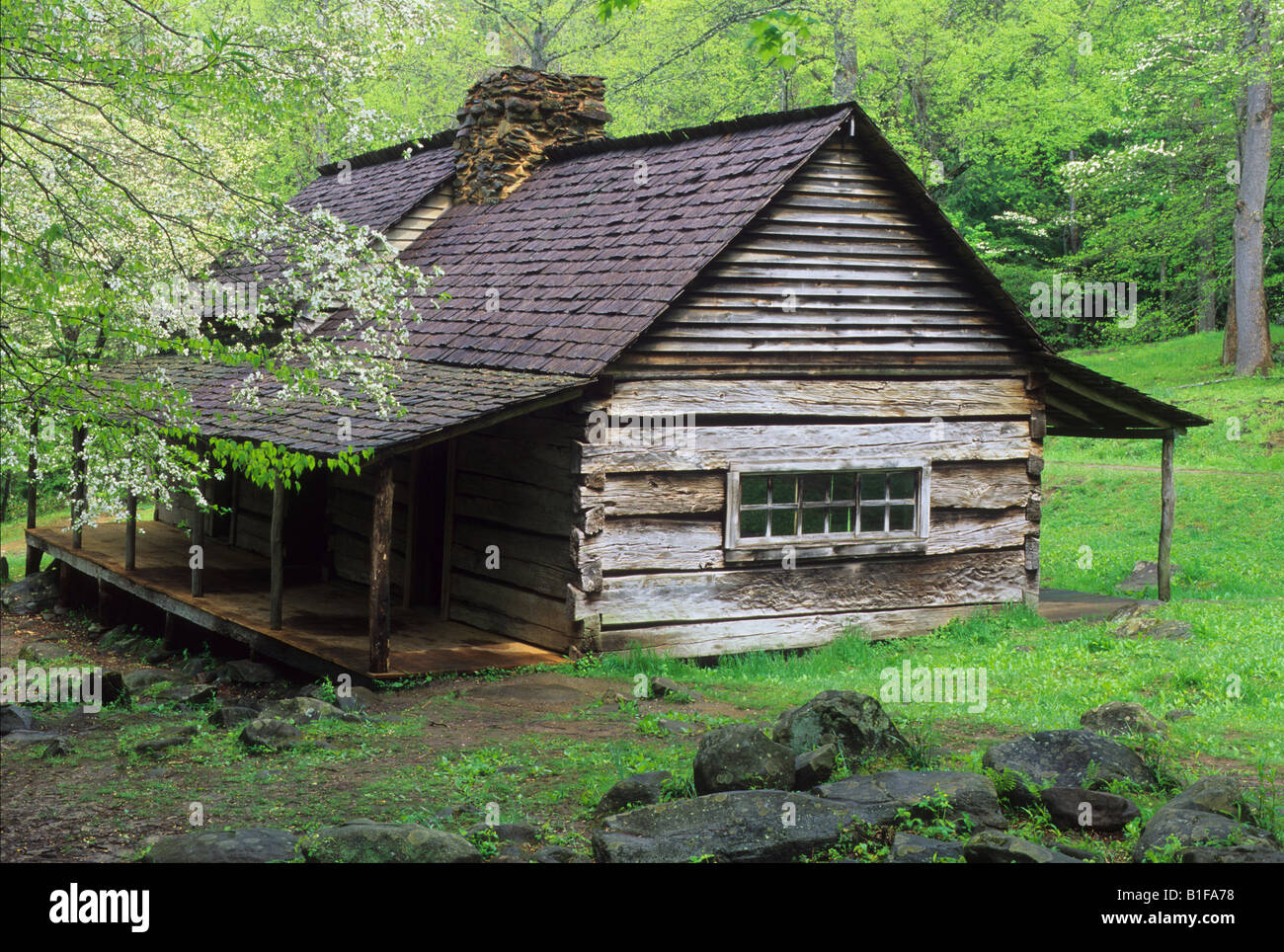 great scenic near my on trips bud drive in fork cabins dp cabin nature smoky sm tn motor ogle the road mountains gatlinburg trail noah roaring
