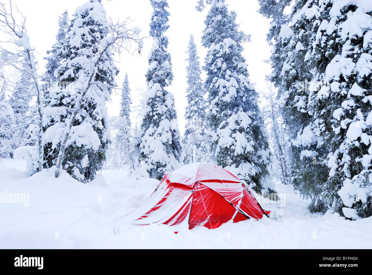 snow covered tent in Gaellivare Lapland, Norrbotten north sweden Stock Photo