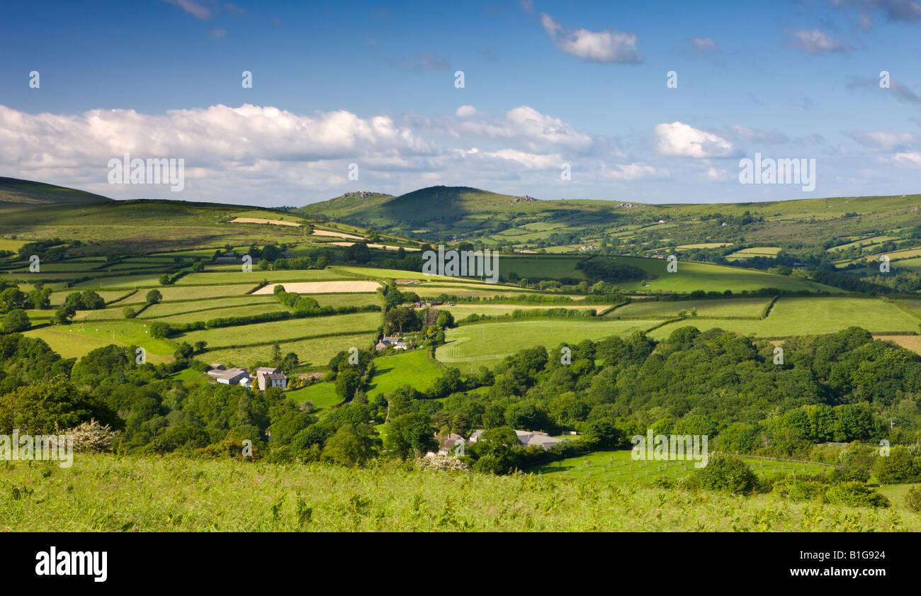 Summer scenes in the dartmoor countryside dartmoor for The devon