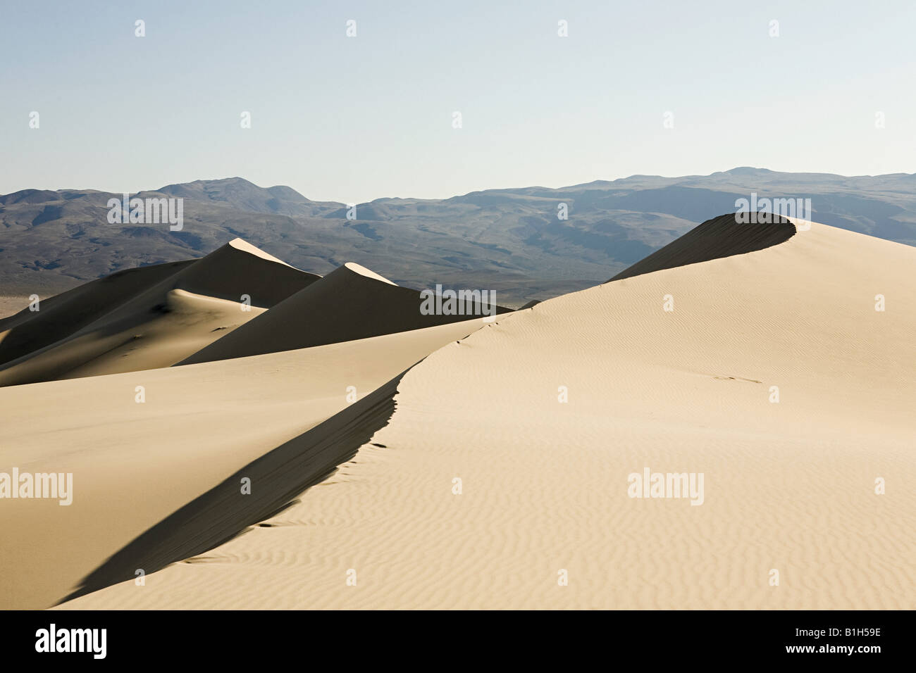 Sand dunes death valley national park - Stock Image