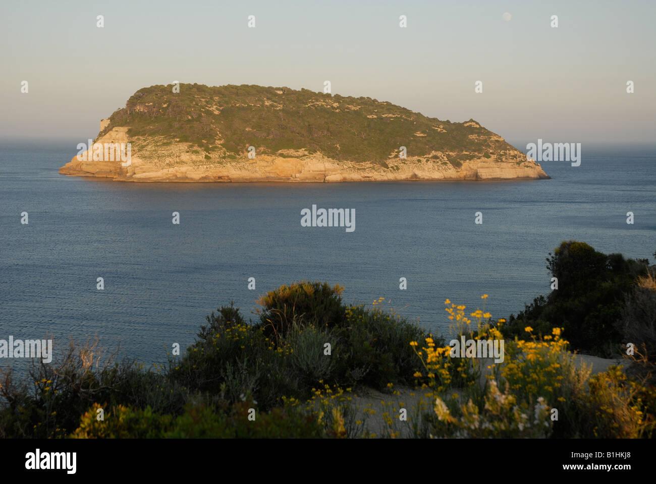 view from Cabo de San Martin to Portichol Island, Javea, Alicante Province, Comunidad Valenciana, Spain - Stock Image