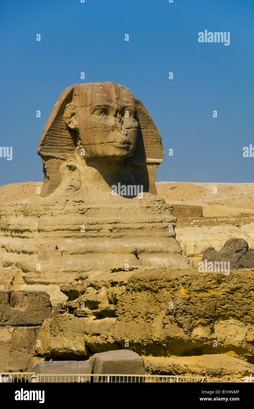 The sphinx on the Giza plateau Egypt - Stock Image