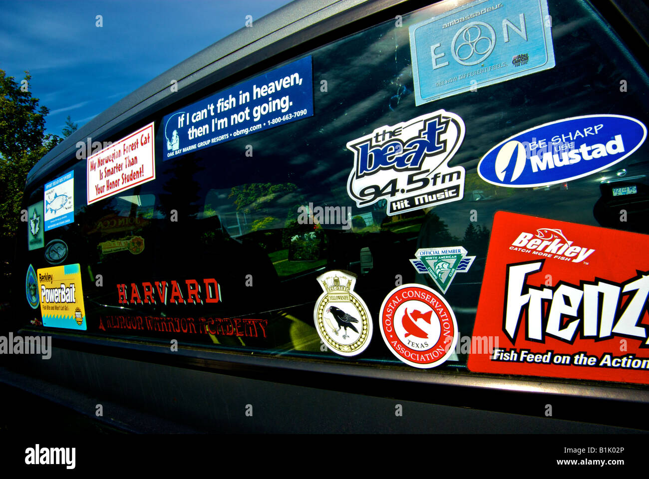 Window stickers on the unwashed cab of an old pickup truck