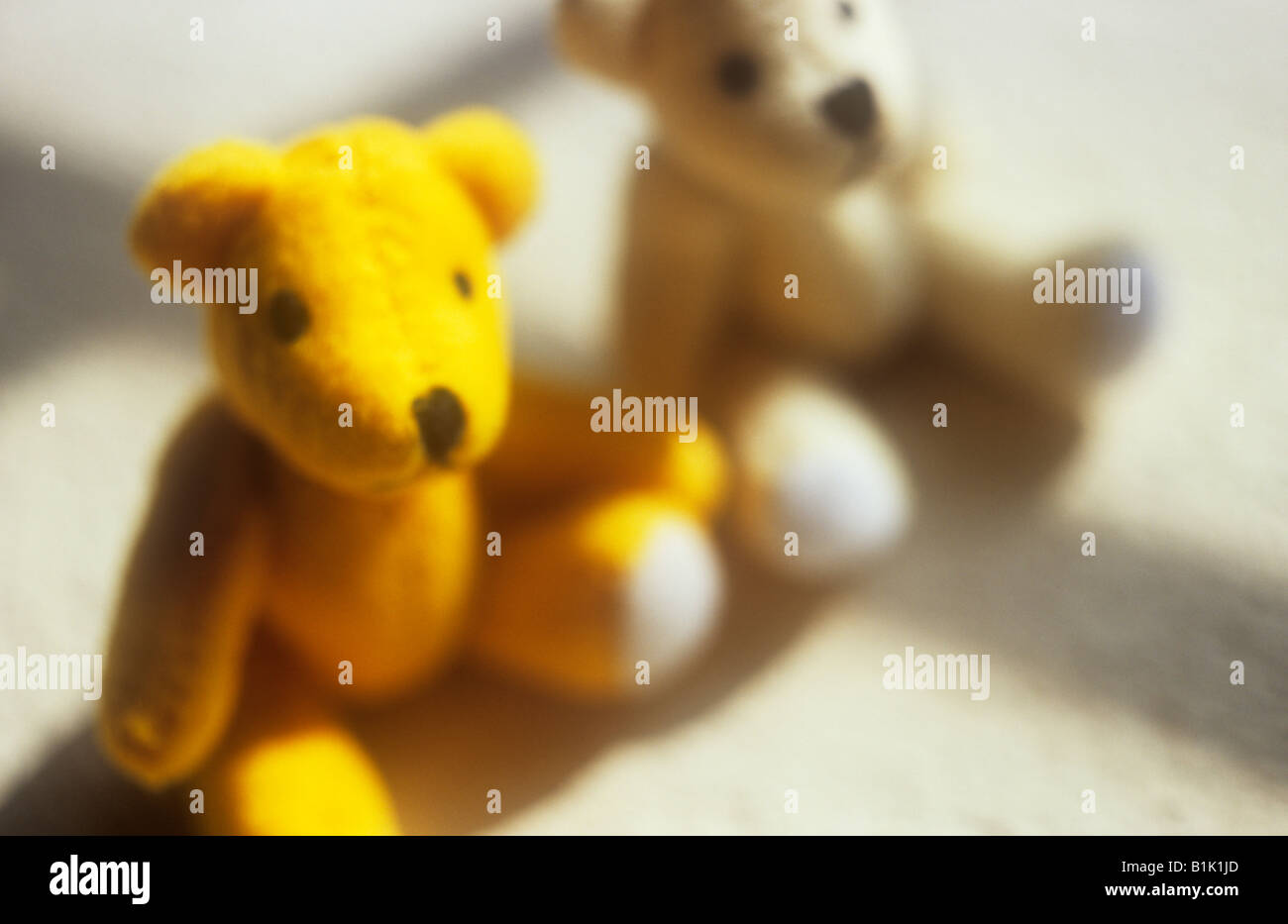 Impressionistic close up of one yellow and one white teddy bear sitting next to each other in sun with window bar Stock Photo