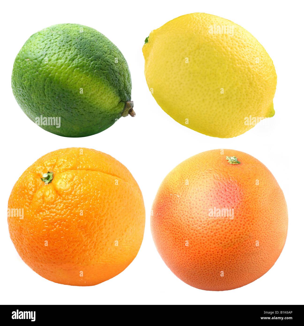 citruses - Stock Image