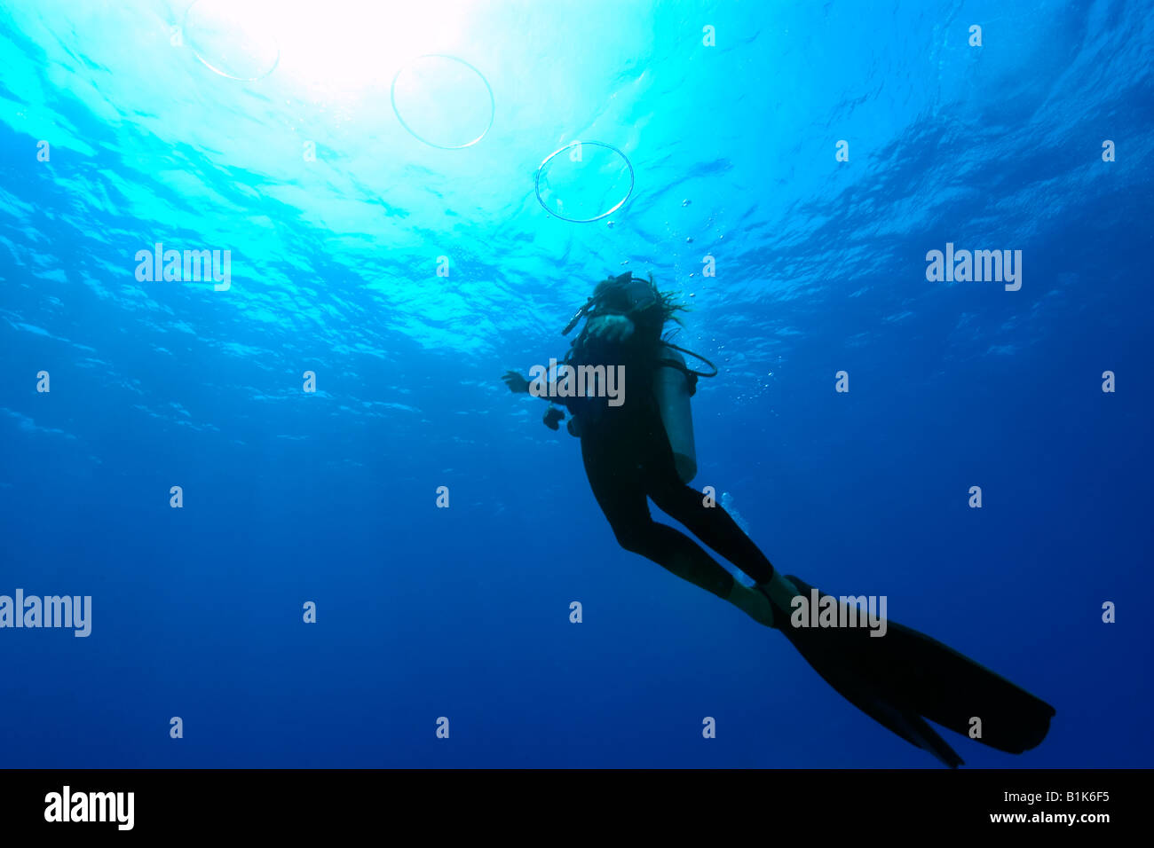 temple twitter adventures deep diver uwphotography u scuba ocean rini templeadventures instructor rings padi dsd status shooting bubble on diving templedivers india