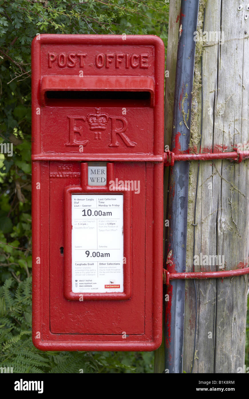 Red post box mounted on a telephone pole with English and