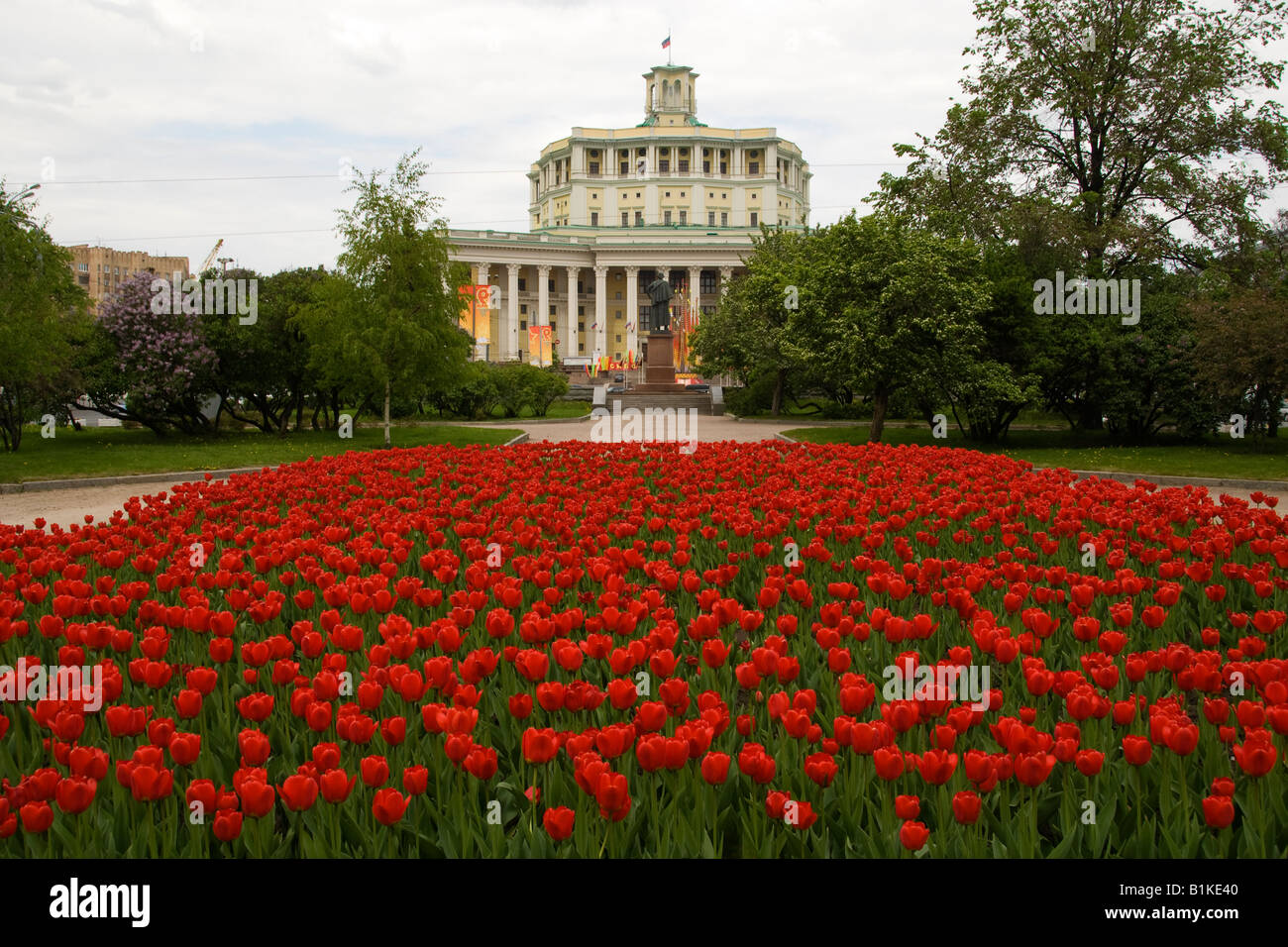 Red tulips and Russian Army Theatre, Suvorovskaya Ploschad, Moscow, Russia - Stock Image