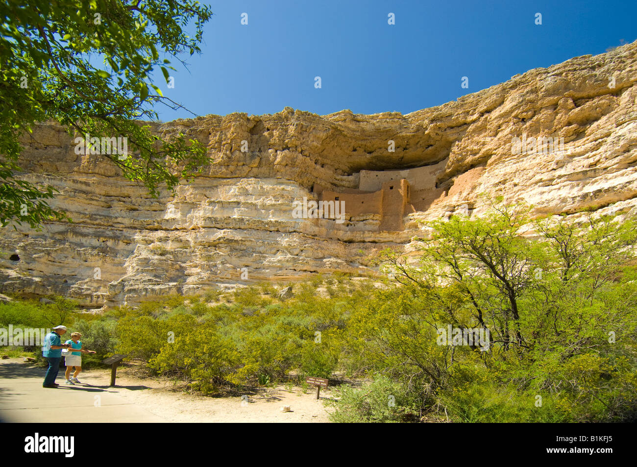 Cliff dwellings in a limestone cliff at Montezuma's Castle  National Monument near Campe Verde Arizona - Stock Image