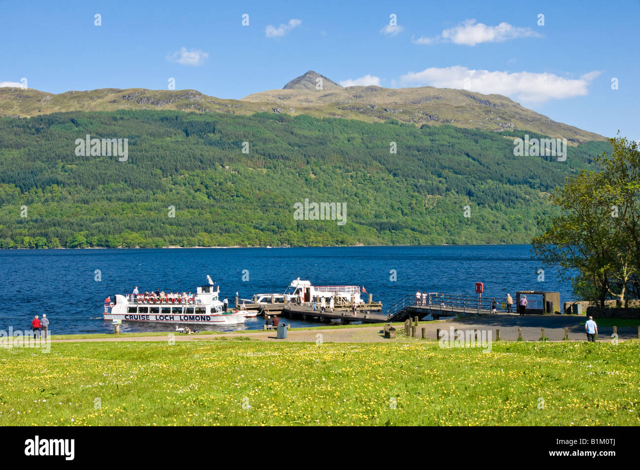 Cruise Loch Lomond passenger vessel approaching the pier at Tarbet Loch Lomond Scotland on a sunny day with Ben - Stock Image
