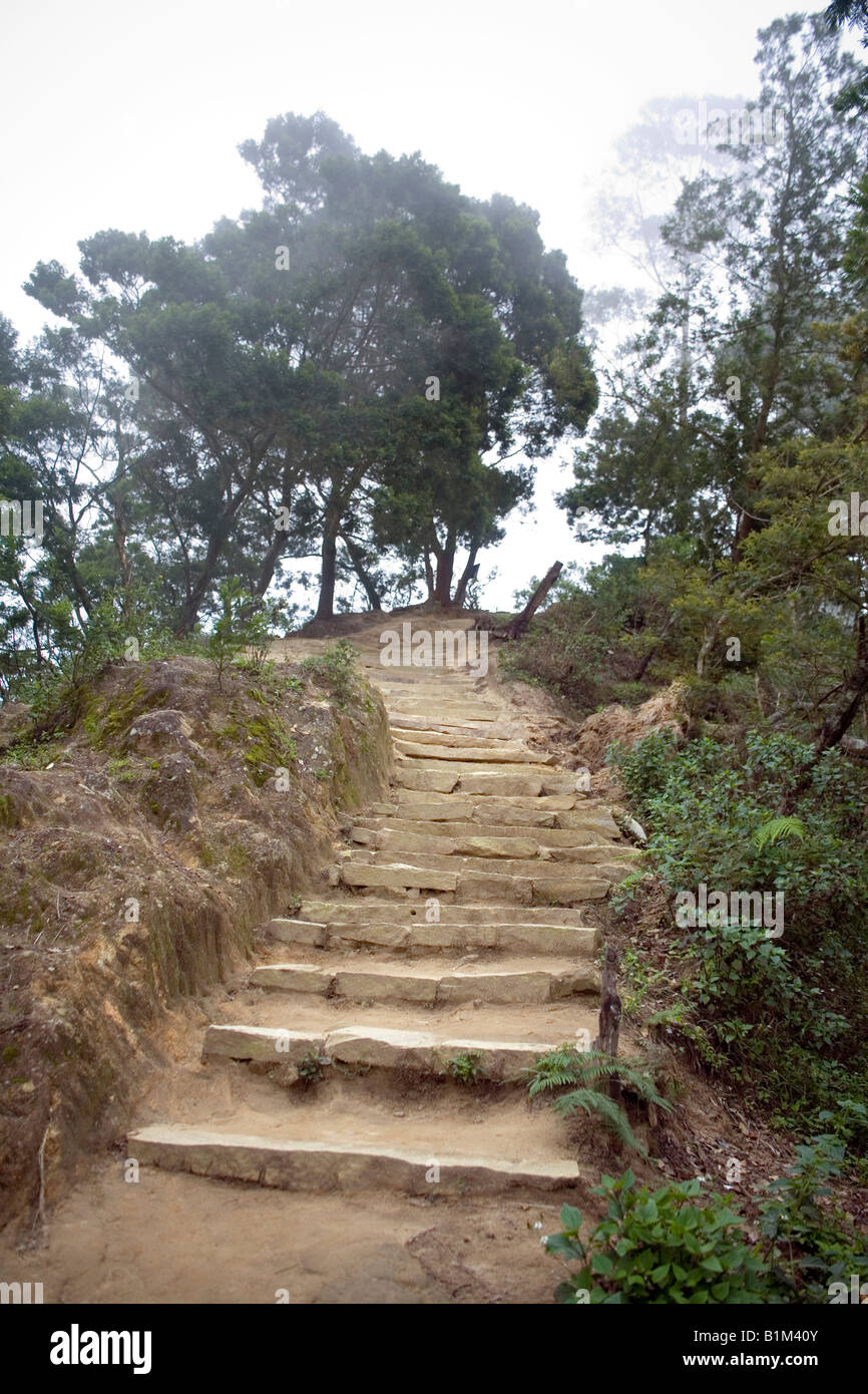 Rough hewn stone treads evoke strength and beauty in the ascent to theviewing platform at Top Station Kerala India - Stock Image