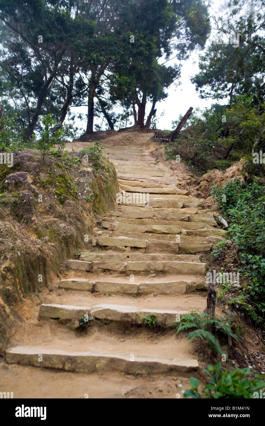 Rough hewn stones as steps evoke strength and beauty in the ascent to the viewing platform at Top Station Kerala - Stock Image
