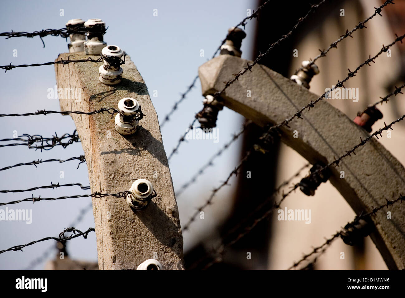 Close up of barbed wire fence at Auschwitz Concentration Camp, Poland - Stock Image