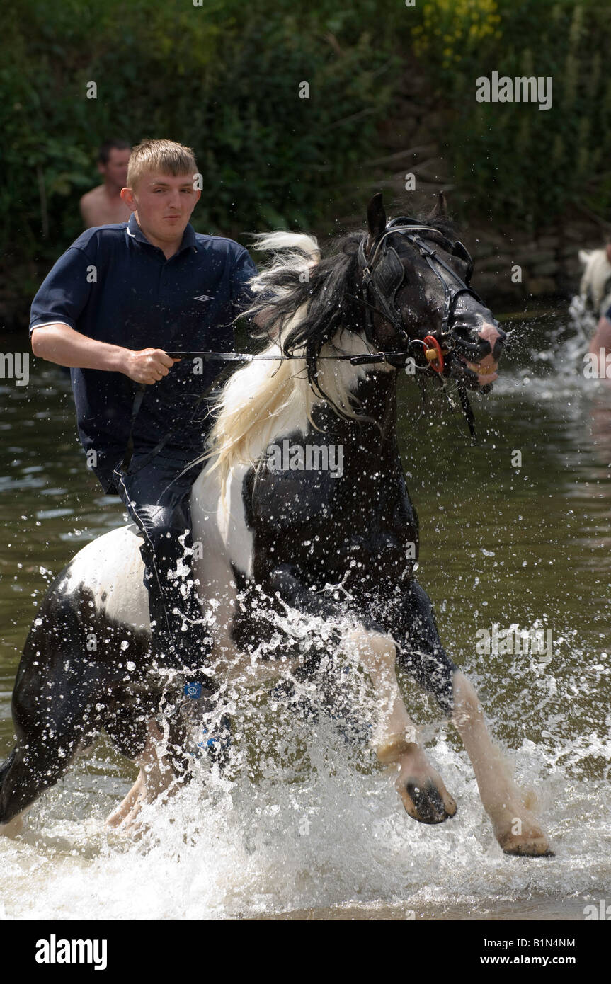 Rider on horseback coming out of River Eden at the ancient Appleby Horse Fair held each June - Stock Image