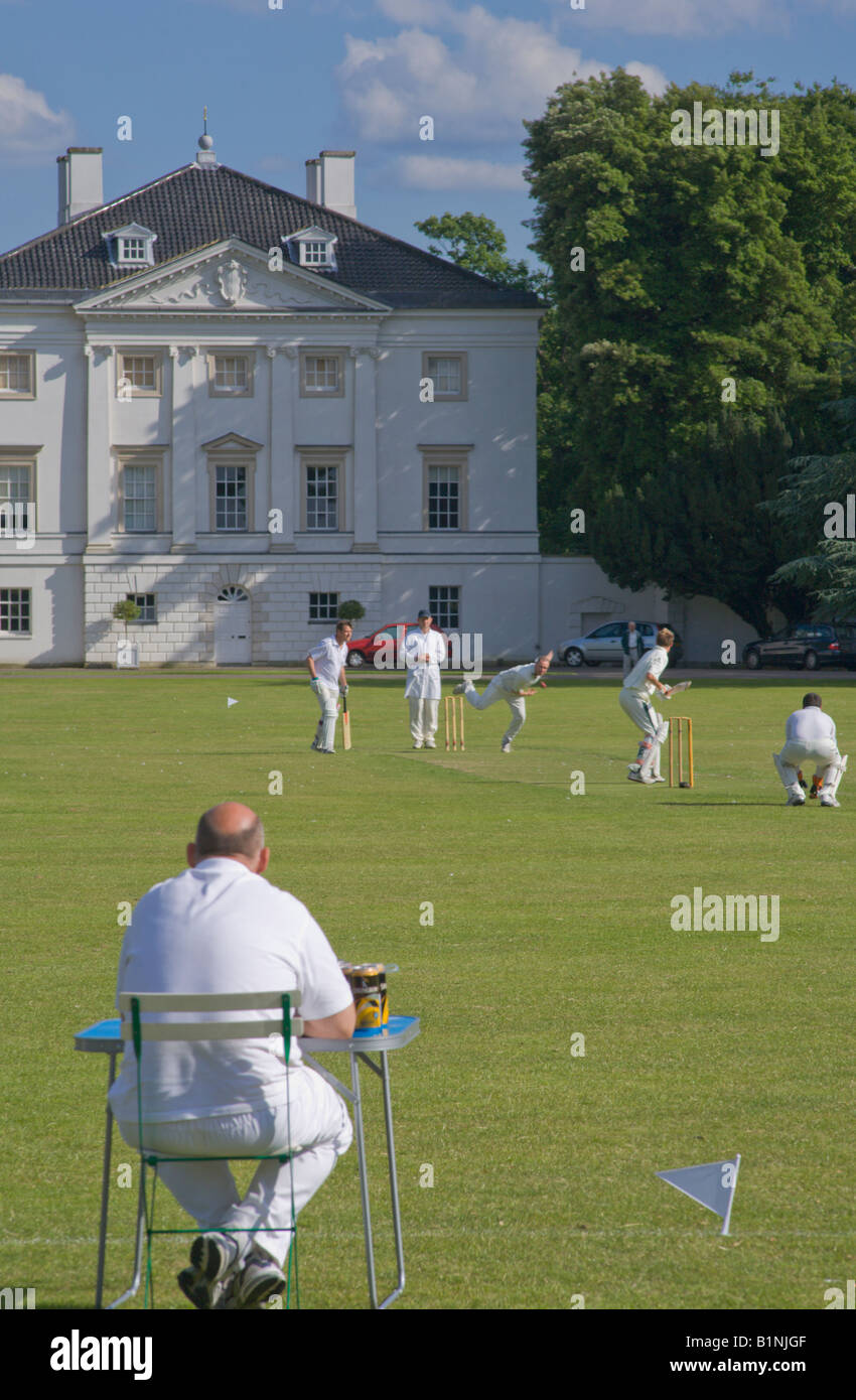 Cricket at Mable Hill Park Twickenham london england uk - Stock Image