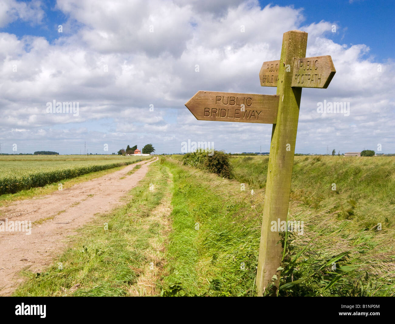 Wooden signpost indicating direction of public footpaths and bridleways, East Yorkshire, England UK - Stock Image