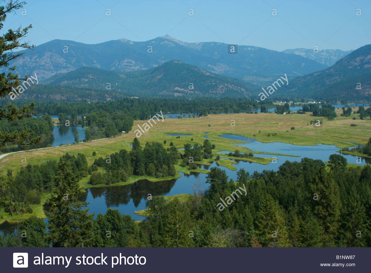The Clarkfork River Drainage And The Cabinet Mountains Of The Kaniksu  National Forest Idaho   Stock