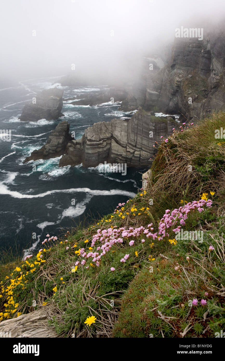 Cliffs at Mizen Head, Co. Cork, Ireland. - Stock Image