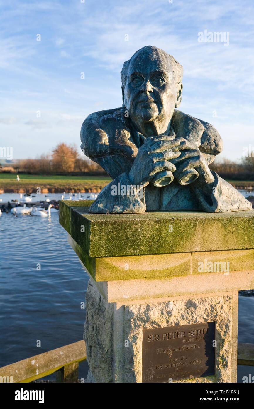 Sculpture of Sir Peter Scott at the Wildfowl & Wetlands Trust Slimbridge Wetland Centre, Gloucestershire Stock Photo