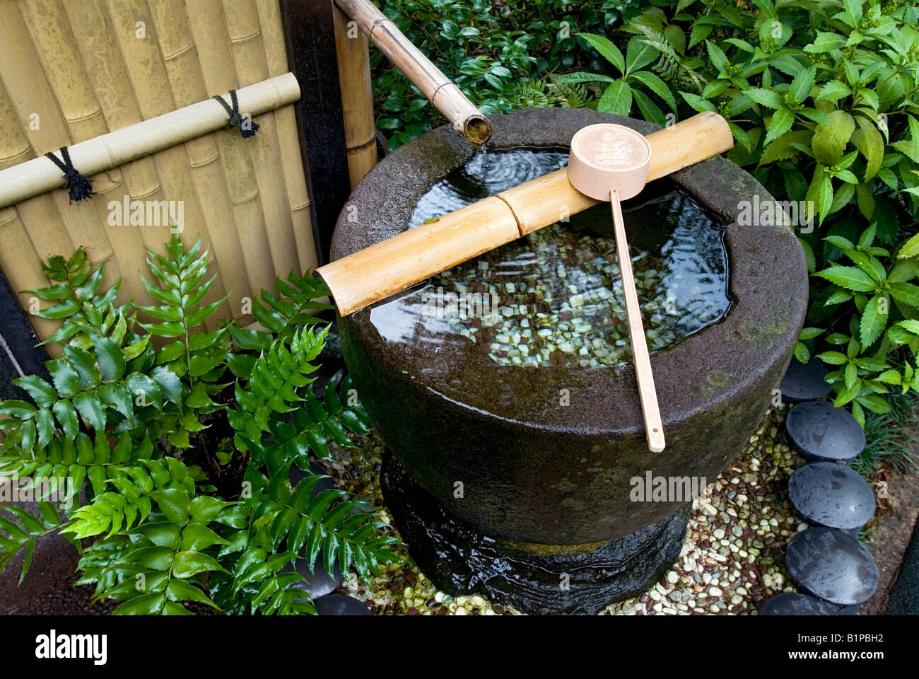 A Tsukubai, Or Stone Basin, In Lush Japanese Garden Filled With Water Has A