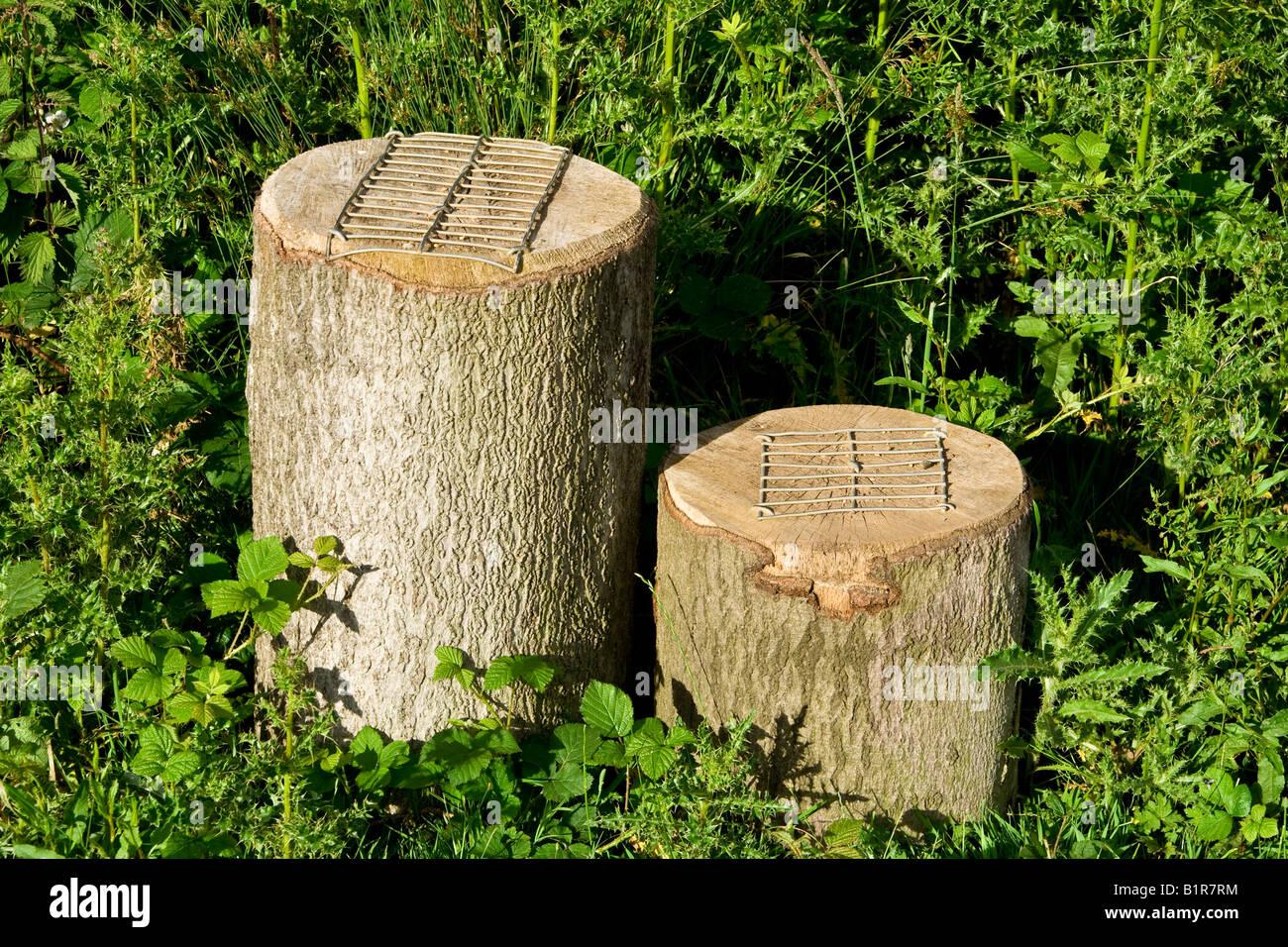 Wooden Mounting Blocks Uk Stock Photo 18336072 Alamy