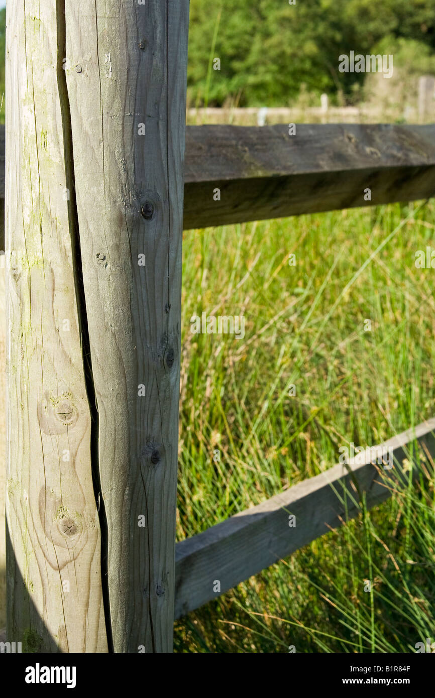 A ^wooden fence, UK. - Stock Image