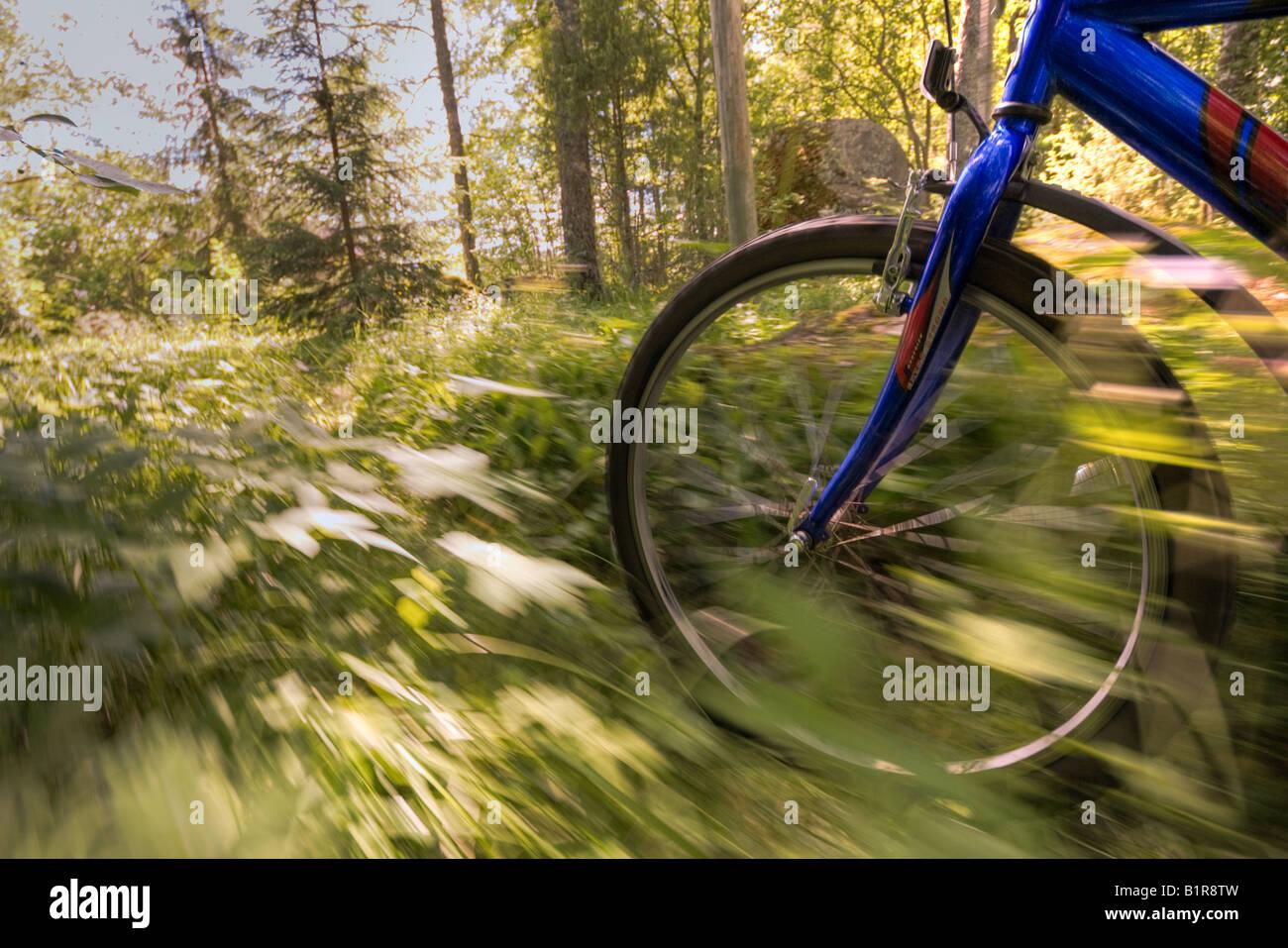 Off-road biking - Stock Image