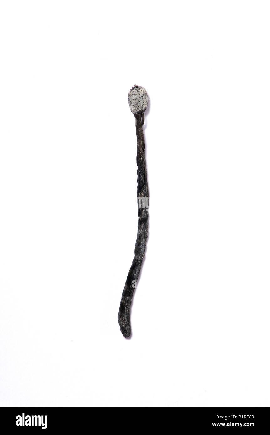 Burnt match - Stock Image