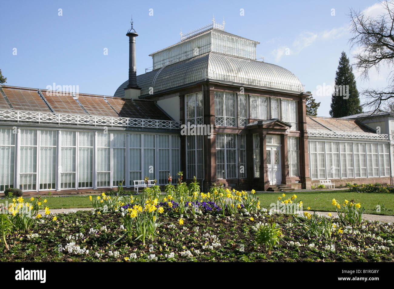 19th century greenhouse, Wilhelmshoehe Castle, Kassel, Hesse, Germany, Europe - Stock Image