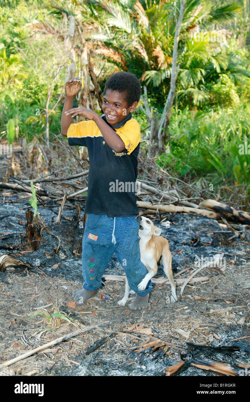 Boy playing with a puppy, Heldsbach, Papua New Guinea, Melanesia - Stock Image