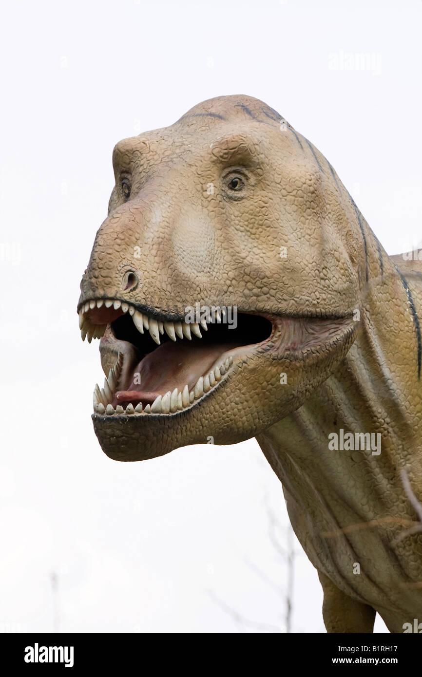 Tyrannosaurus Rex, dinosaur in front of Senckenberg Museum, Frankfurt am Main, Hesse, Germany, Europe - Stock Image