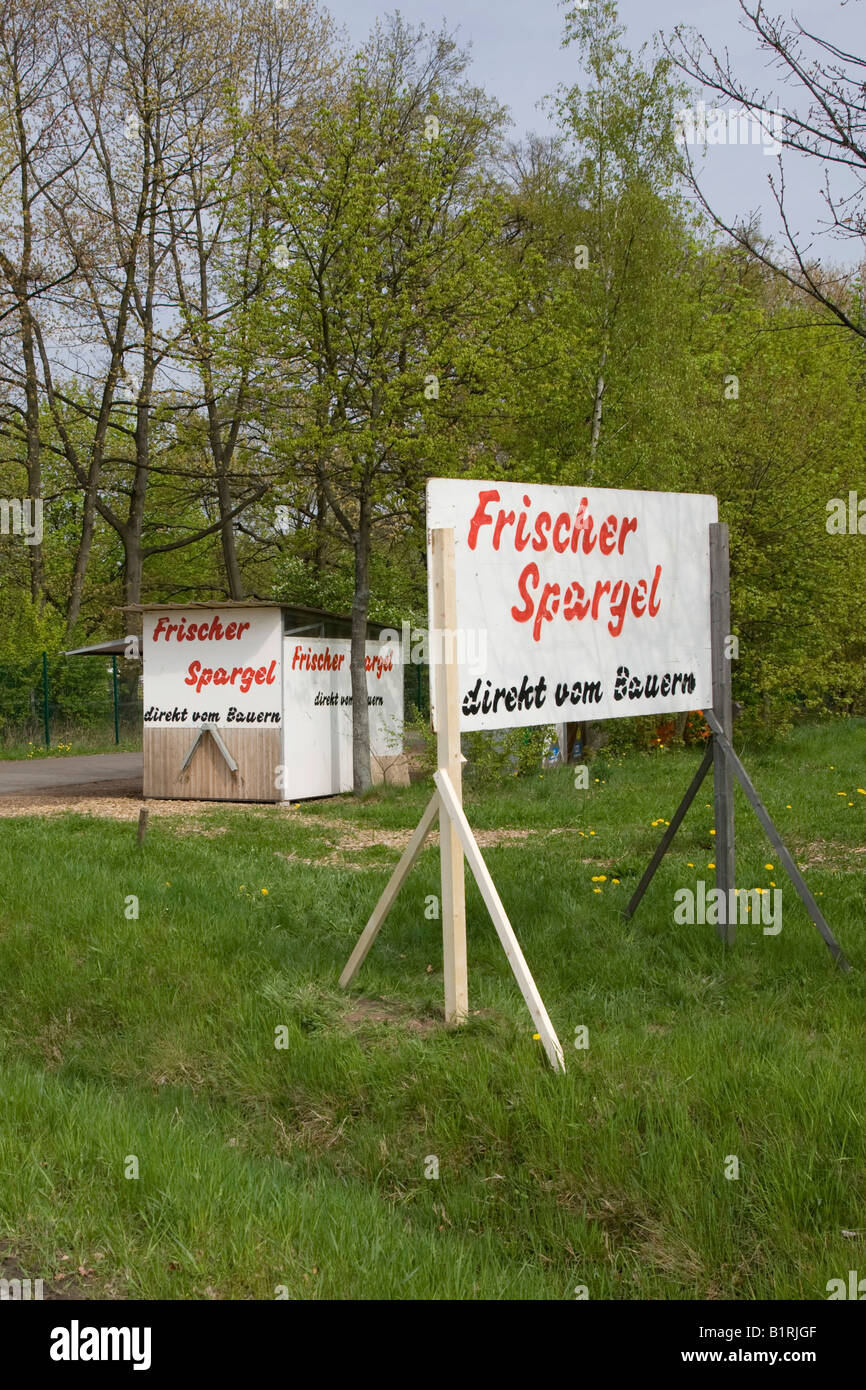 Sign advertising fresh asparagus for sale, asparagus sales booth, Bergstrasse mountain route, Hesse, Germany, Europe - Stock Image