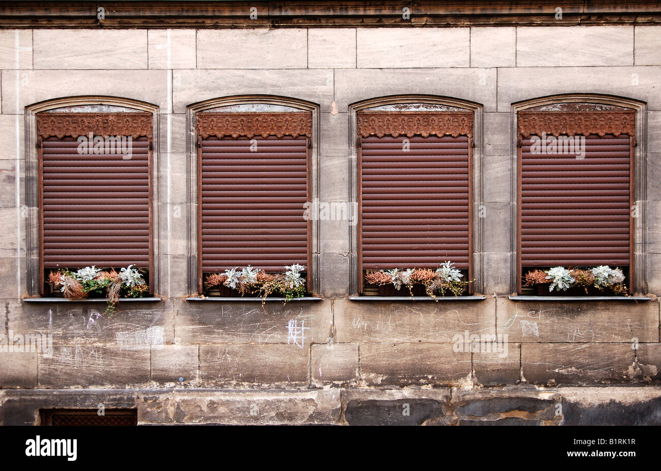 Dried, withered flowers on shuttered windows, Fuerth, Middle Franconia, Bavaria, Germany, Europe - Stock Image