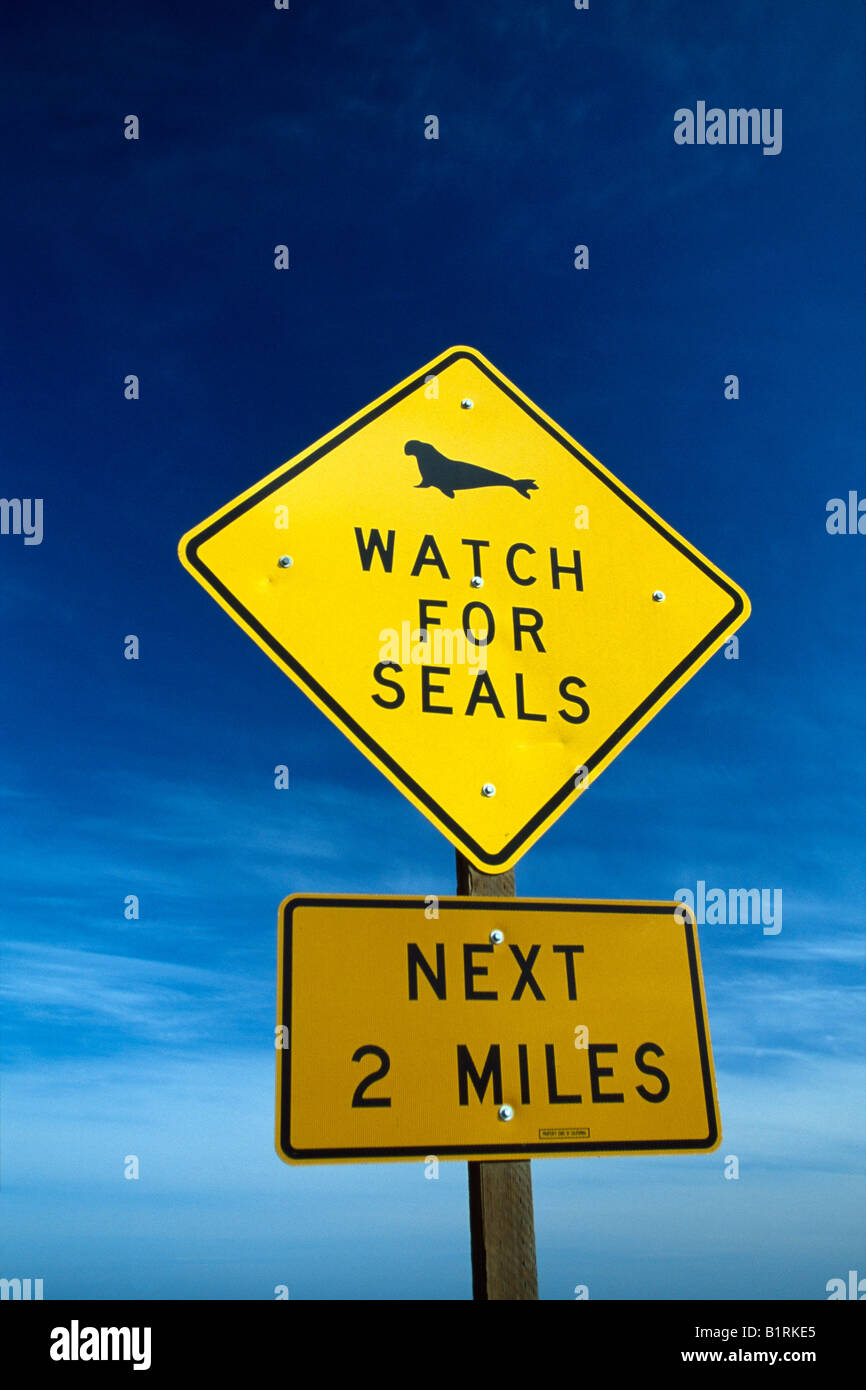 Indication of seals, Monterey, California, USA - Stock Image