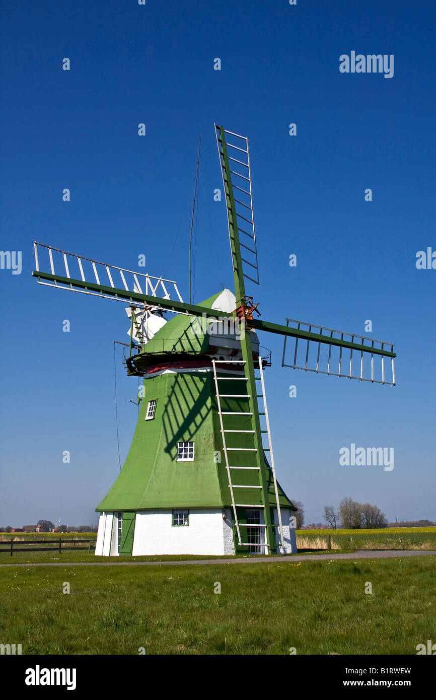 The Erdhollaender, an historic Dutch windmill with wind rose near Wittmund, East Friesland, Lower Saxony, Germany, Stock Photo